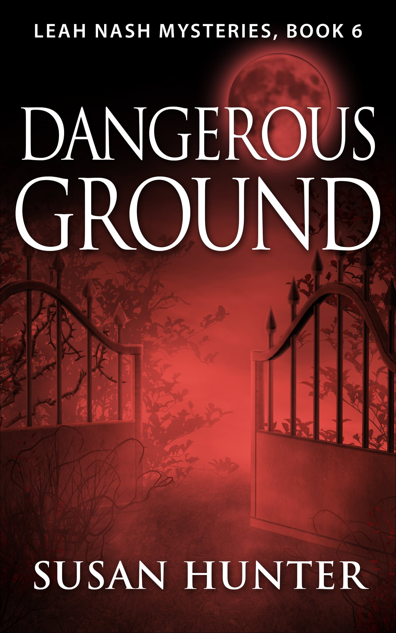 Dangerous Ground Book Cover