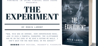 Excerpt // The Experiment by Robin Lamont