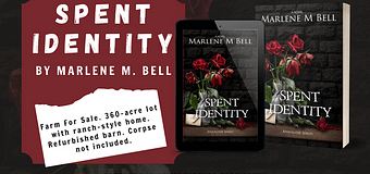 Guest Post & *GIVEAWAY* // Marlene M. Bell, Author of Spent Identity