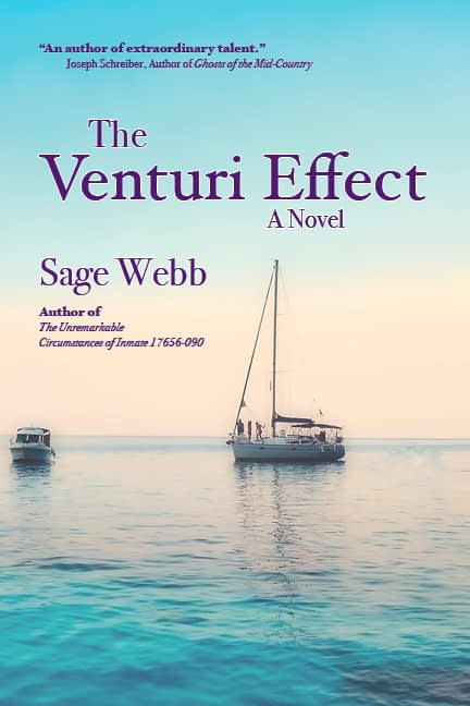 The Venturi Effect Book Cover