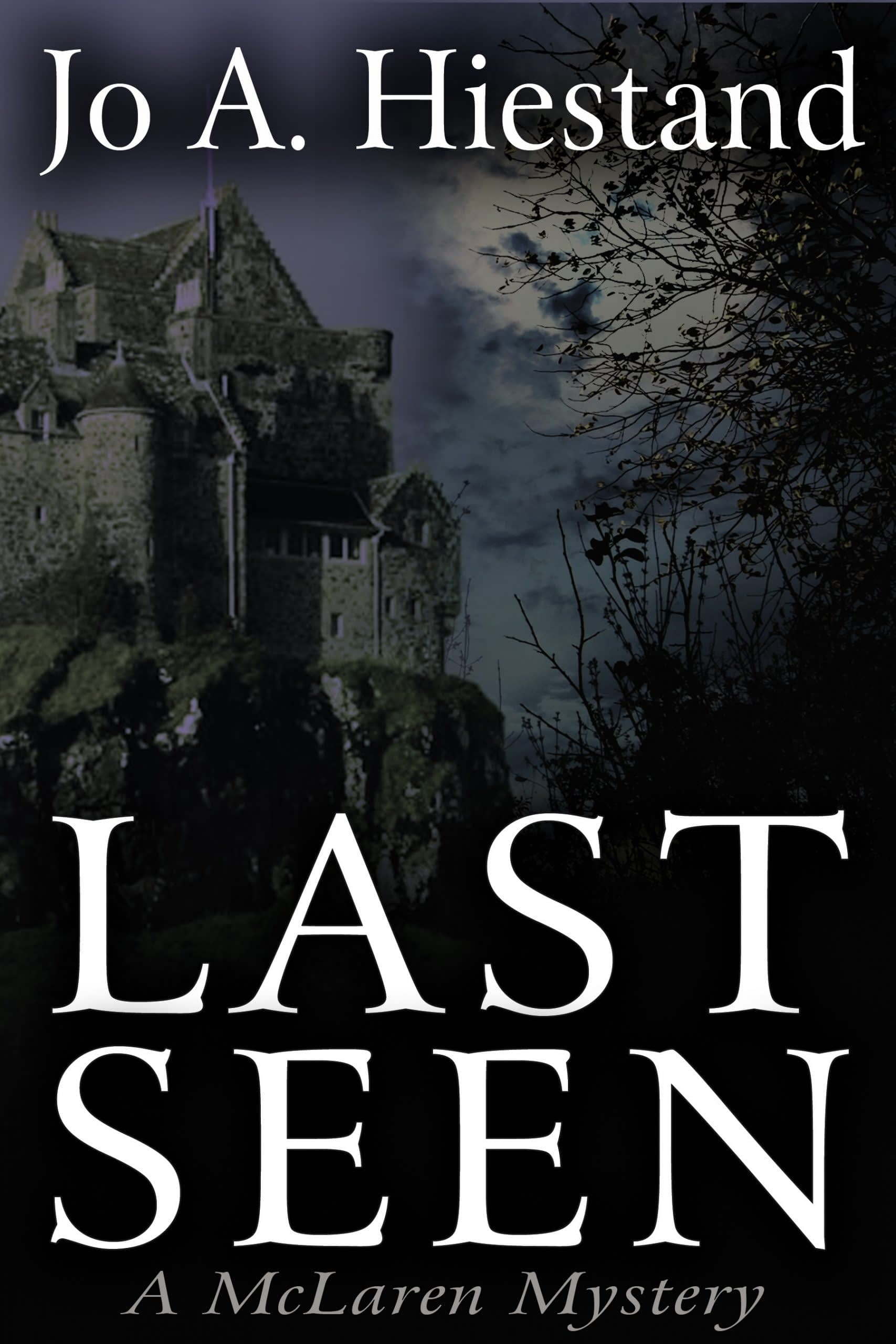 Last Seen Book Cover