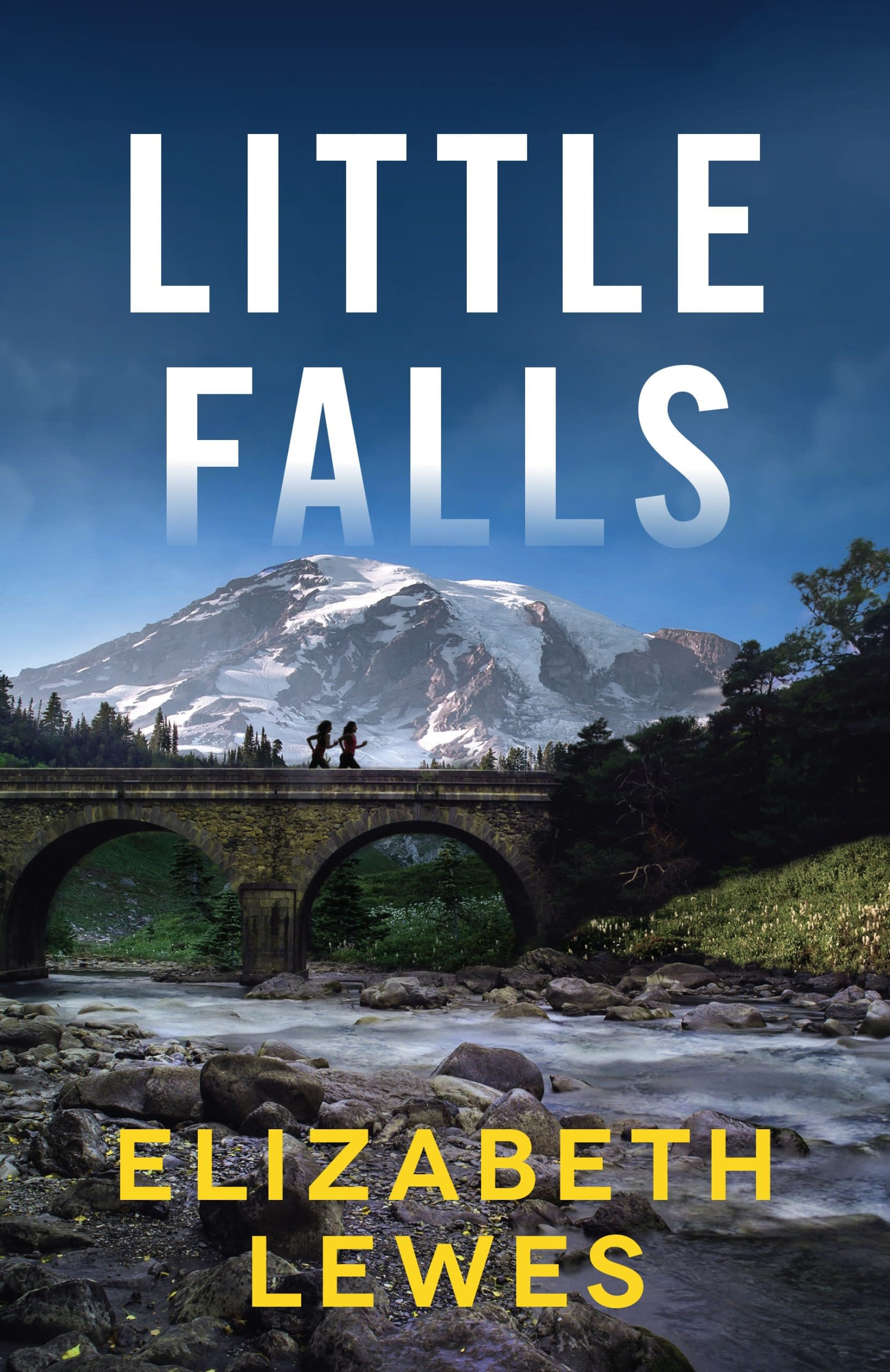 Little Falls Book Cover