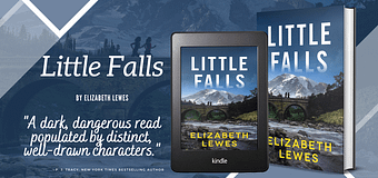 Interview & *GIVEAWAY* // Elizabeth Lewes, Author of Little Falls