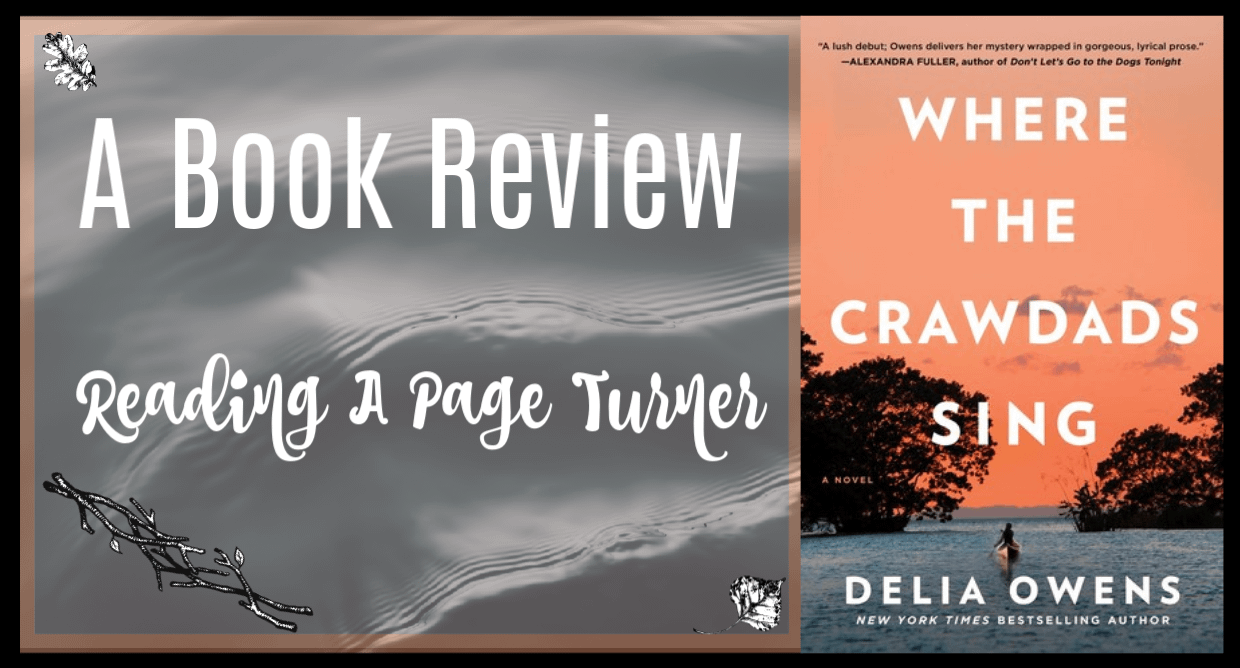 Where The Crawdads Sing Review Banner