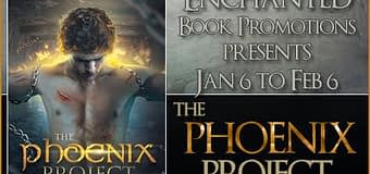 Book Excerpt // The Phoenix Project by D.M. Cain