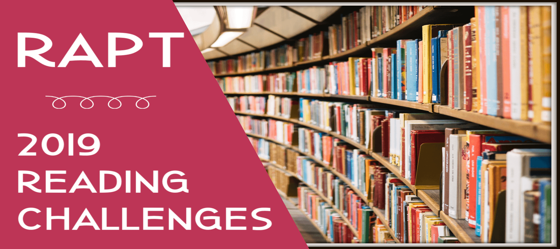 Reading Challenge Banner/